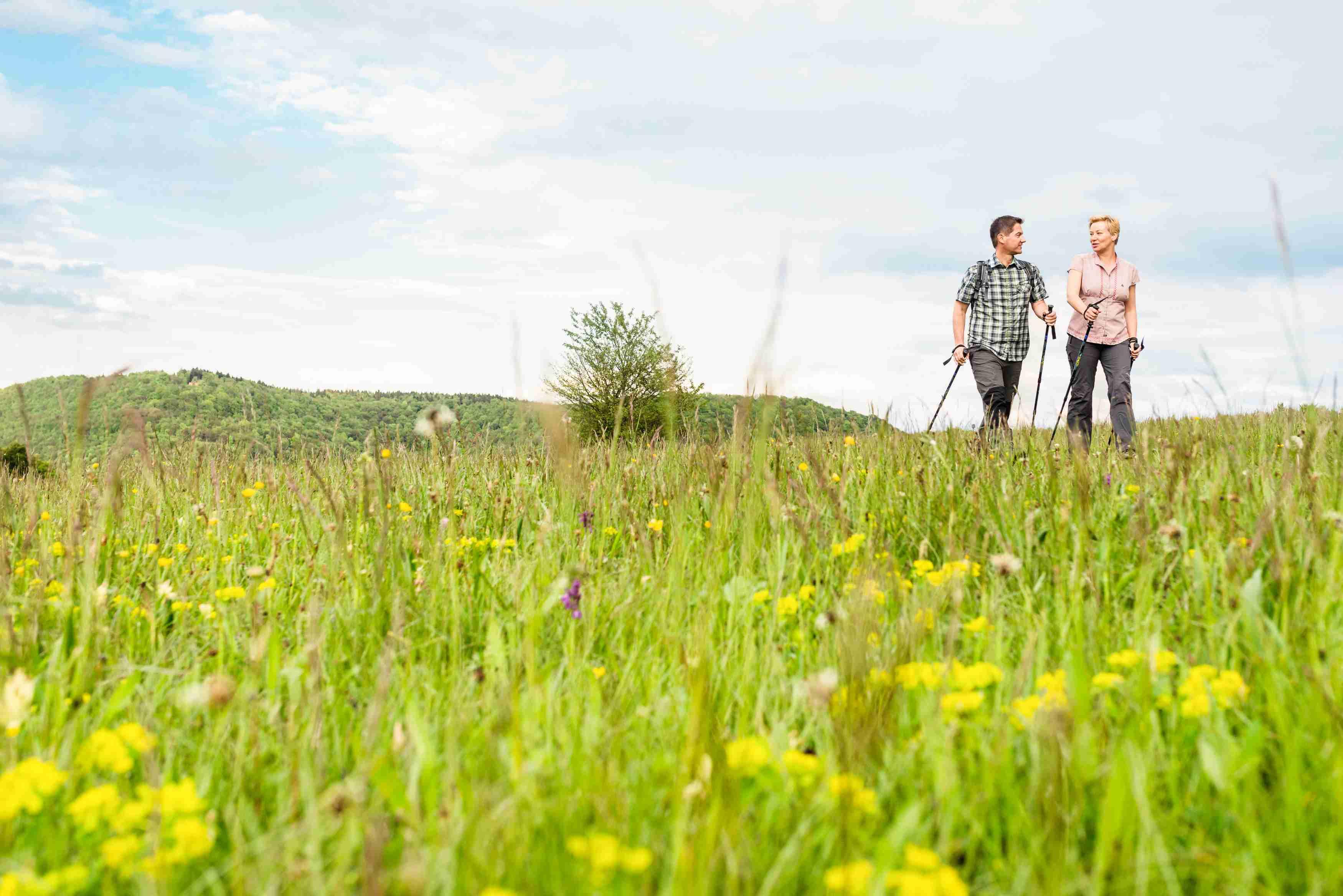 Wandern am Mössinger Früchtetrauf (Foto: Corinna Spitzbarth)