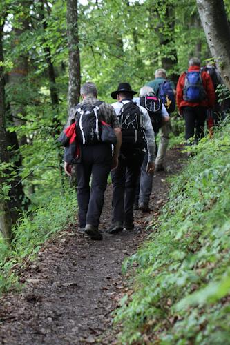 Wandersteig am Albtrauf  ( (c) Andrea Letsch)