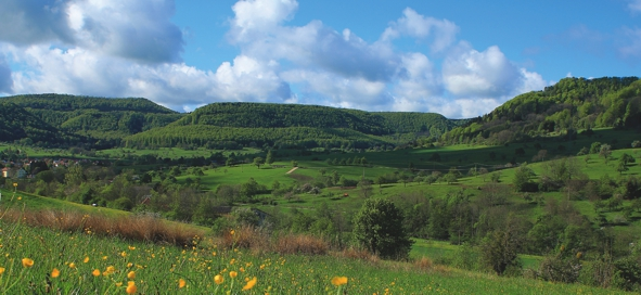 Albtrauflandschaft bei Talheim