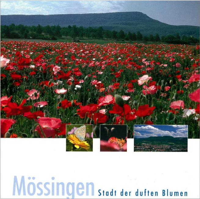 Mössingen – Stadt der duften Blumen