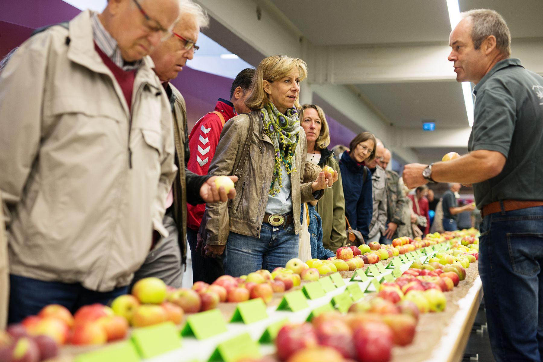 Sortenschau beim Mössinger Apfelfest