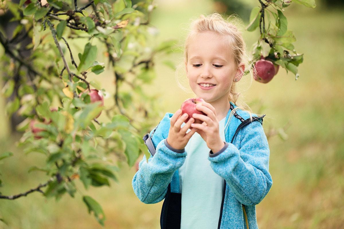 Apfelgenuss am Früchtetrauf
