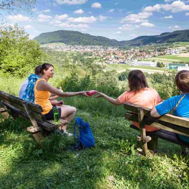Aussicht vom Schlossbuckel auf den Öschinger Albtrauf ((c) AngelikaHammer)