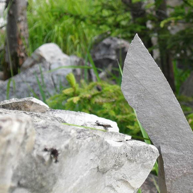 herumliegende Steine vom Bergrutsch