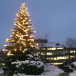 Weihnachtsbaum am Rathaus in Mössingen