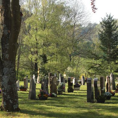 Rasengräber Friedhof Talheim