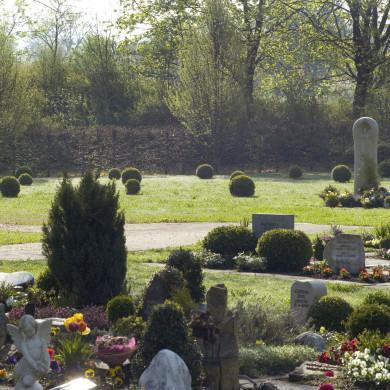 Anonymes Grabfeld auf dem Friedhof Mössingen im Hintergrund