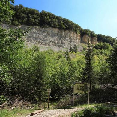 Blick vom Wanderweg auf den Bergrutsch