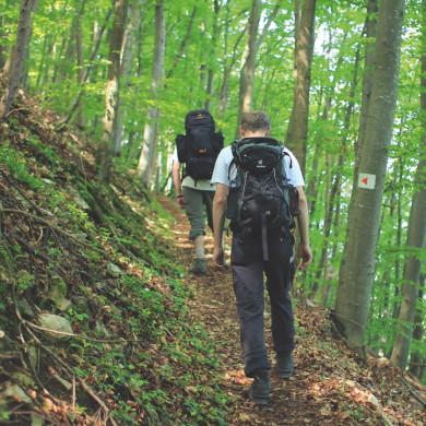 Wanderer am Hirschkopf