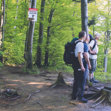 Wanderer oberhalb des Mössinger Bergrutsches