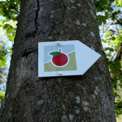 Markierungszeichen Früchtetrauf