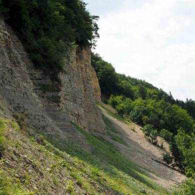 Blick zum Bergrutsch am Hirschkopf