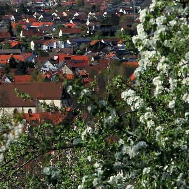 Frühjahrsblick auf Mössingen