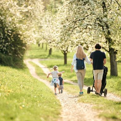 Spaziergang zur Streuobstblüte