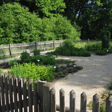 Kräutergarten beim Trinkpavillon