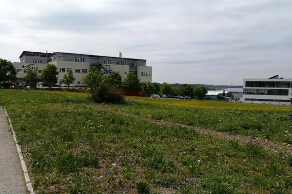 Flächen und Gebäude im Gewerbegebiet Schlattwiesen Mössingen