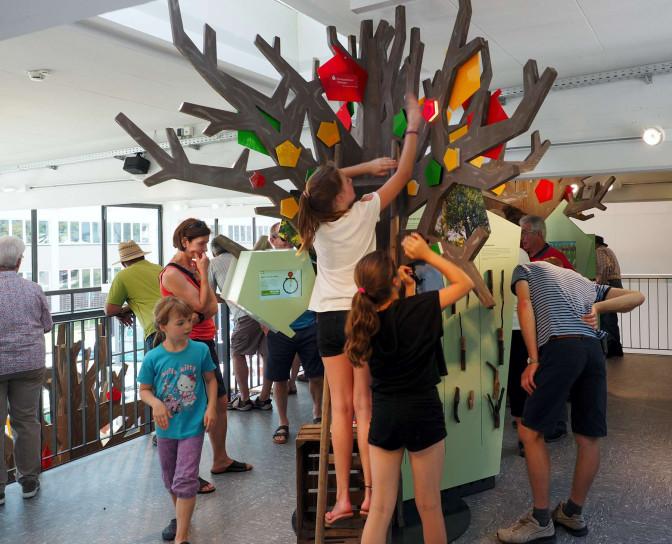 Im Streuobst-Infozentrum üben Kinder handwerkliche Tätigkeiten an einem Spielzeugbaum
