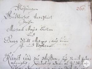 """""""Güthlicher Vergleich"""", 1738"""