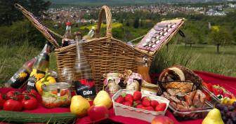 Picknick am Mössinger Früchtetrauf