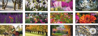 Bilder Blumenstadtkalender 2020