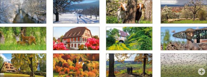 Zusamenfassung Kalenderfotos 21