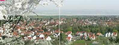 Panorama der Stadt Mössingen